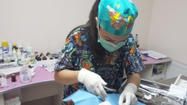 Serviciu medical veterinar